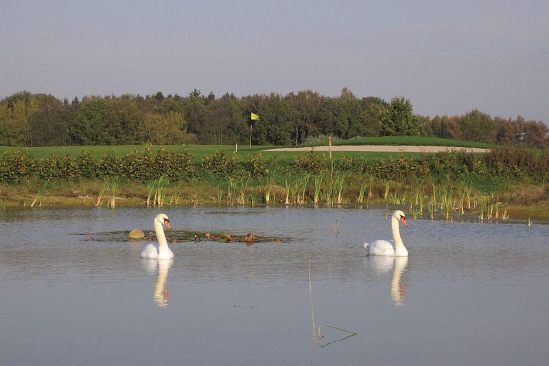 Golfbaan t Zelle nabij Hotel-Restaurant Bakker in Vorden