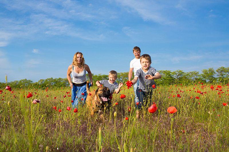 Wandelen met kinderen en hond en vanuit Hotel-Restaurant Bakker in Vorden